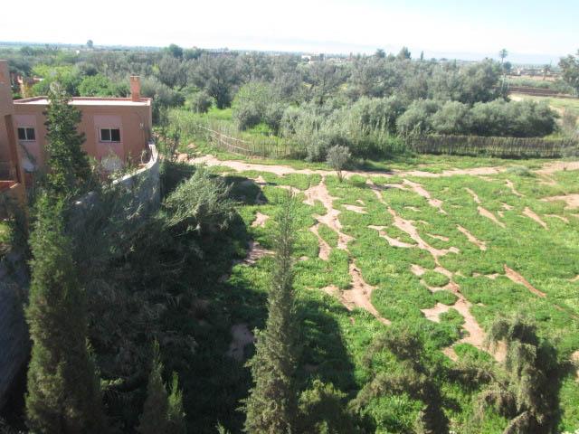 Location villa Marrakech - Rent villa Marrakech