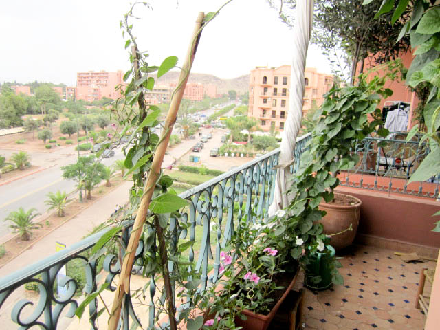 Apartment and villas for sale in Marrakech