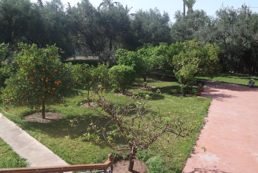 Buy Villa In Marrakech