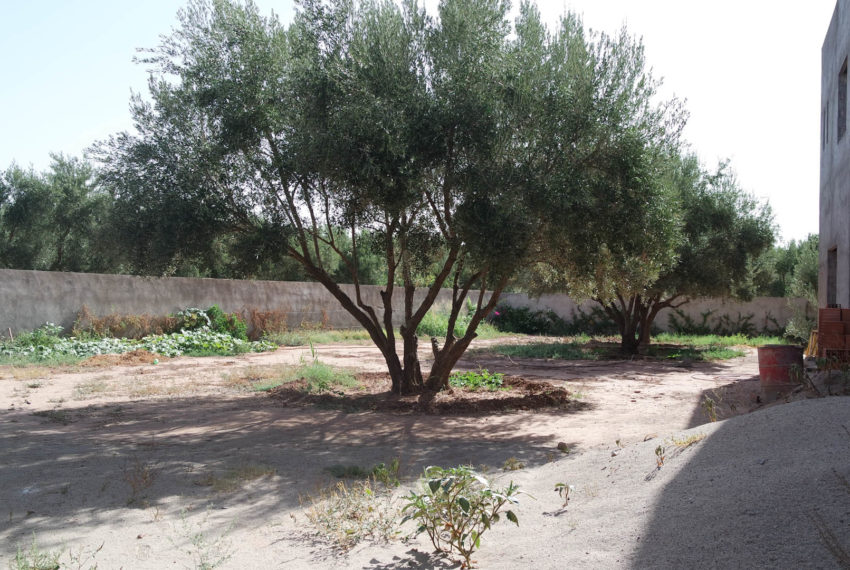Buy Villa In Marrakech
