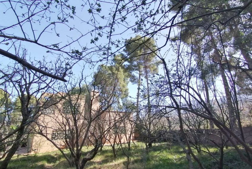 16villa for sale marrakech.jpeg