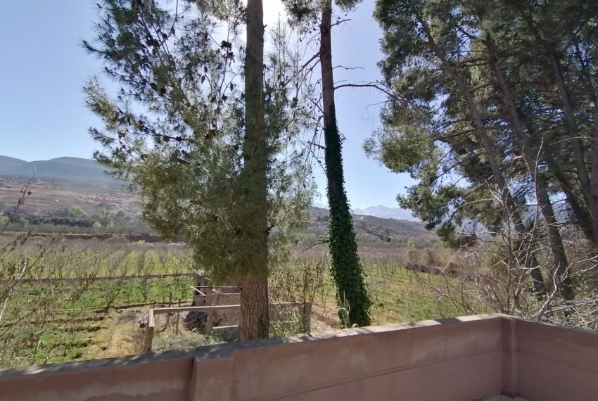21villa for sale marrakech.jpeg